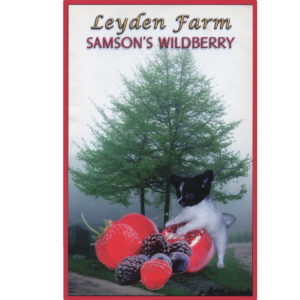 Samson's Wildberry